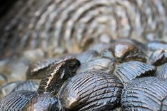 Shell-beeldhouwwerk in Oxford royalty-vrije stock fotografie
