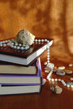 Shell on the books royalty free stock photo