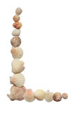 Shell border. Border made from various sea shells isolated on white background Stock Photography