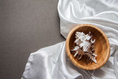 Shell in a bowl on white silk Stock Photography
