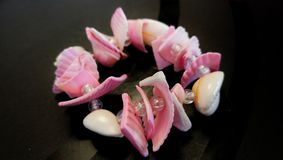 Shell bracelet. Pink color, closeup Royalty Free Stock Image