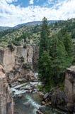 Shell Canyon, Wyoming immagini stock libere da diritti