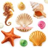 Shell, caracol, molusco, estrella de mar, caballo de mar conjunto del icono 3d ilustración del vector