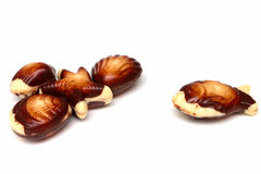 Shell chocolates Stock Photos