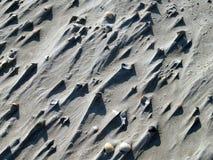 Shell com areia foto de stock