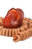 Shell com os grânulos de madeira no fundo branco Imagem de Stock