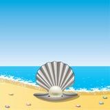 Shell con la perla en la orilla de mar