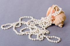 Shell con las perlas Foto de archivo libre de regalías