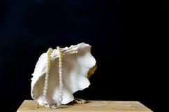 Shell con las perlas blancas en negro Foto de archivo libre de regalías