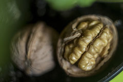 Shell and core of the walnut. Close picture with boceh Royalty Free Stock Photography