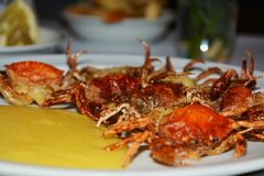 Shell crabs and cornmeal mush, background Stock Image