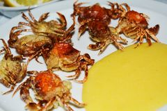 Shell crabs and cornmeal mush, close up Stock Photography
