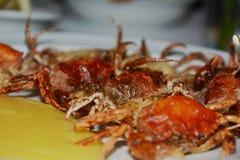 Shell crabs and yellow cornmeal mush, close up Stock Images