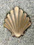 Shell crantent le symbole de la manière de St James photographie stock