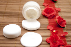 Shell cream with red loop Royalty Free Stock Image