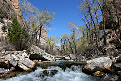 Shell creek. Flowing through the bighorn mountains, wyoming Stock Images
