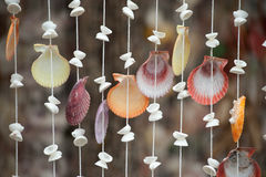 Shell curtain . Stock Photography
