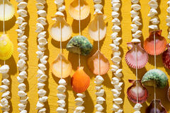 Shell Curtain on Yellow Wall Royalty Free Stock Images