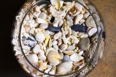 Shell da costa de mar, corais, pedras em uma garrafa de vidro e vidro de vinho imagens de stock royalty free