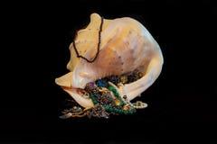Shell da gema Fotografia de Stock Royalty Free