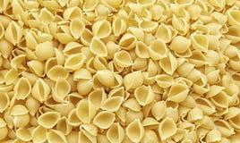 Shell da massa com textura e detalhes adicionais fotografia de stock royalty free
