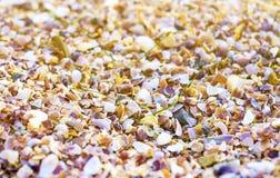 Shell da quebra e alargamento pequenos do por do sol imagens de stock royalty free