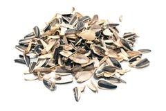 Shell das sementes de girassol imagem de stock