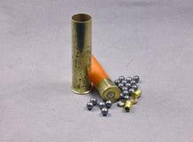 shell de bronze Imagens de Stock