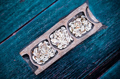 Shell de Cowry do dinheiro Fotos de Stock