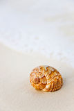 Shell de la playa Imagenes de archivo