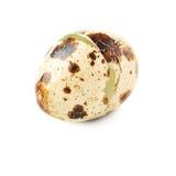 Shell de ovo das codorniz rachado e isolado sobre o fundo branco Foto de Stock Royalty Free