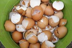 Shell de ovos no escaninho imagem de stock royalty free