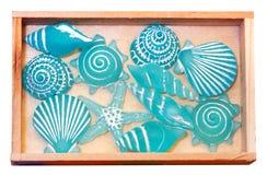 Shell decoration Stock Photos
