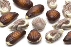 Shell del chocolate Fotografía de archivo