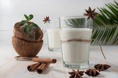 Shell del coco y de la leche de coco en vidrio con canela fotos de archivo