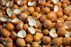 Shell del huevos, fondo de cáscara de huevos Imagen de archivo libre de regalías