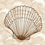Shell del mar Imagenes de archivo