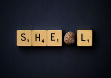 Shell. 'Shell' depicted using scrabble-like tiles and a shell in place of the first 'L Stock Photo