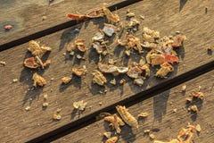 Shell der Erdnuss auf Holztisch Stockbilder