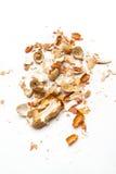Shell des arachides image libre de droits