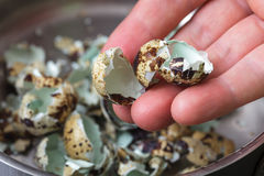Shell des oeufs sur le fond de la casserole image stock