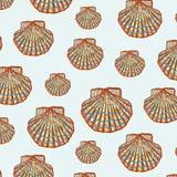 Shell deseniuje Fotografia Stock