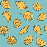 Shell deseniuje Zdjęcie Royalty Free