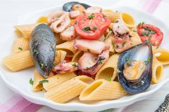 Shell dish with pasta and seafood Stock Photos