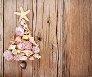 Shell do mar dados forma como uma árvore de Natal Fotografia de Stock Royalty Free