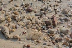 Shell do mar e textura das partes da pedra Imagem de Stock Royalty Free