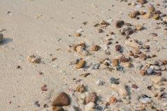 Shell do mar e textura das partes da pedra Fotos de Stock Royalty Free
