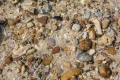 Shell do mar e textura das partes da pedra Imagem de Stock