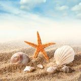Shell do mar na areia contra o céu foto de stock royalty free