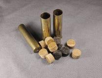 Shell do metal Imagem de Stock Royalty Free